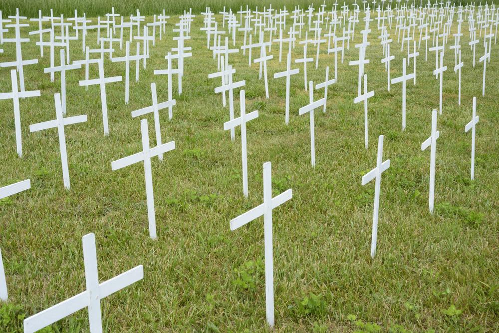 綠色草坪上排成排的白色十字架(紀念未出生的孩子)