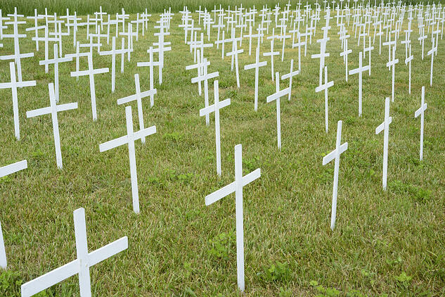Many anonymous white crosses (commemorating unborn children) in rows on green lawn