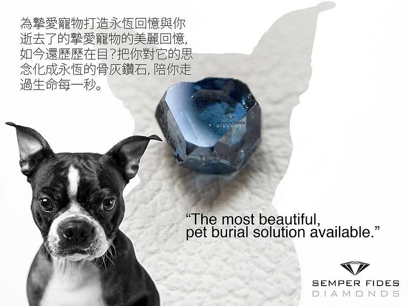 SEMPER FIDES PET MEMORIAL DIAMOND NECKLACES IN HONG KONG
